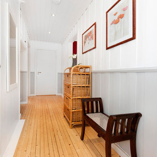 他の地域の中サイズのトラディショナルスタイルのおしゃれな廊下 (マルチカラーの壁、淡色無垢フローリング) の写真
