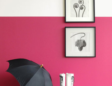 Styling for Colorhouse Paint