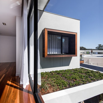 Upstairs Hall with Rooftop Garden Bed