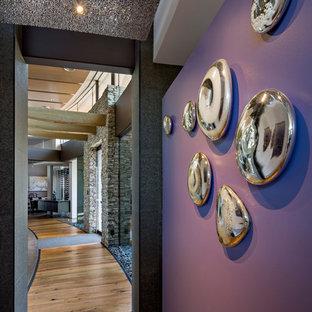 Idéer för stora funkis hallar, med lila väggar, mellanmörkt trägolv och brunt golv