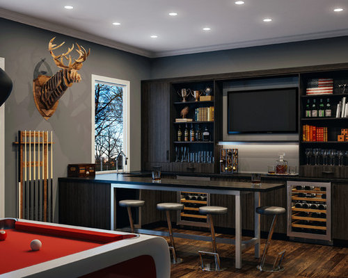 Contemporary Home Bar Design Ideas, Remodels & Photos