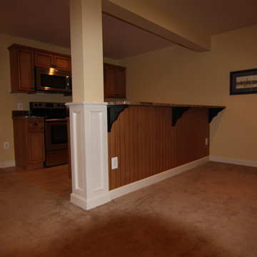 NV home basement build out