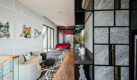Room Tour: A Cool Rooftop Lounge That's a Pet-Lover's Delight