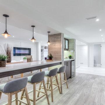 Thornhill Basement Design and Renovation