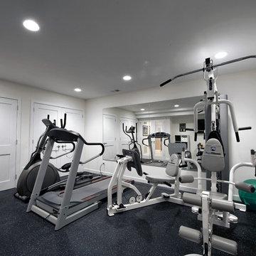 Ashburn Contemporary Basement - Gym