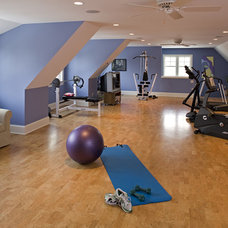 Traditional Home Gym by Knight Construction Design | Chanhassen, Minnesota