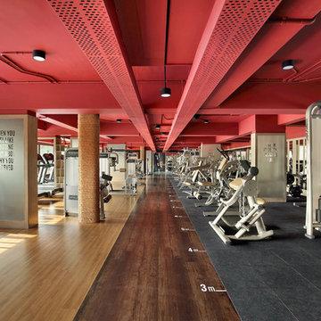 Concept 1 Gym