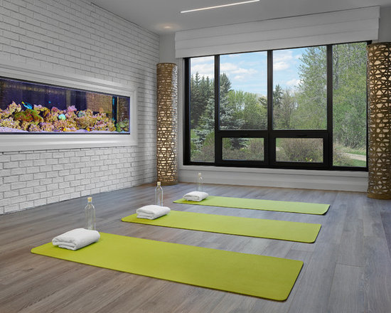 Contemporary Home Yoga Studio Design Ideas, Pictures, Remodel U0026 Decor