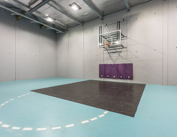 Fantastic reno on Harborne Street with basketball court under the property!