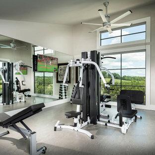 Esempio di una sala pesi minimalista di medie dimensioni con pareti grigie e soffitto a volta