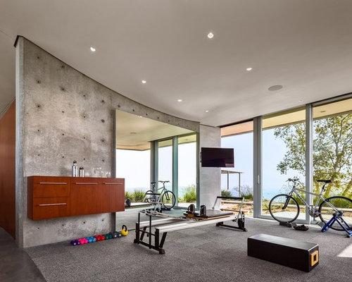 Best modern home gym design ideas remodel pictures houzz