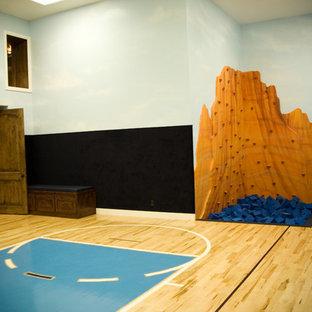 Ispirazione per un grande campo sportivo coperto chic con pareti multicolore e pavimento in compensato