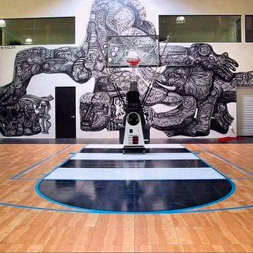 SnapSports - Huge indoor Home Basketball Court