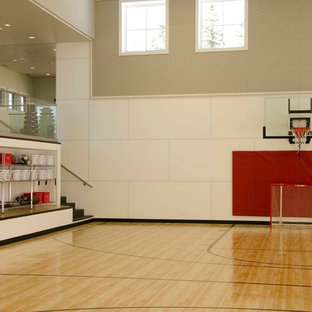 Large country indoor sport court photo in Denver with white walls