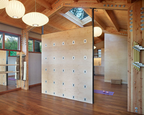 Modern Home Gym Design Ideas Pictures Remodel Decor