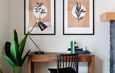 6 Most Common Houseplant Problems & How to Treat Them