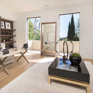Trendy freestanding desk light wood floor and beige floor study room photo in Los Angeles with white walls, a ribbon fireplace and a stone fireplace