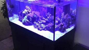 DSA Rimless Aquarium