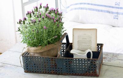 Conseil de pro : Habillez vos petits pots de verdure pour l'hiver