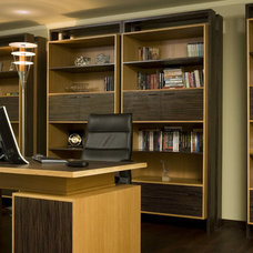 Modern Home Office by Angel Mangarakov