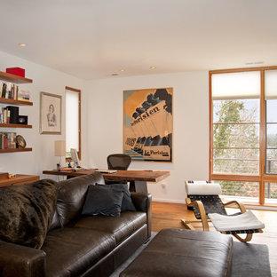 Esempio di un ufficio moderno di medie dimensioni con pareti bianche, parquet chiaro, camino classico, cornice del camino in pietra e scrivania autoportante