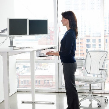 Humanscale Diffrient World Chair and Float Desk