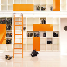 Modern Ladders And Step Stools by Bartels Exclusive Designer Doors