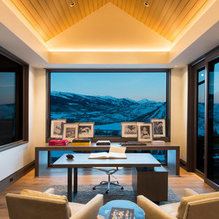 Inspiration for a large contemporary freestanding desk light wood floor and brown floor study room remodel in Denver with no fireplace and beige walls