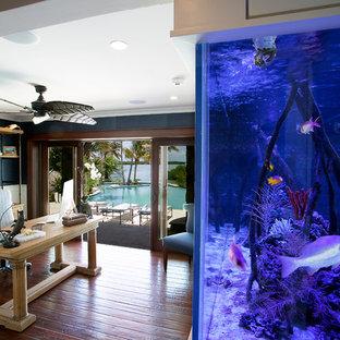 Idee per un ampio ufficio tropicale con pareti blu, parquet scuro, nessun camino, scrivania autoportante e pavimento marrone