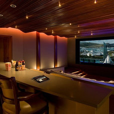 Contemporary Home Theater by Paragon Technology Group