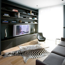 Contemporary Home Theater Modern Media Room