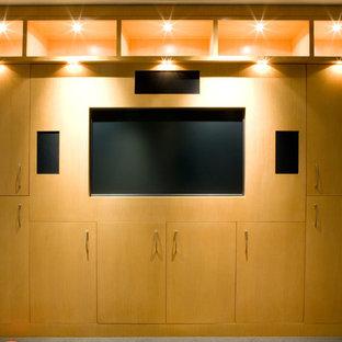 75 Modern Home Theater Design Ideas Stylish Modern Home