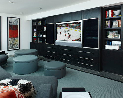 basement tv wall ideas pictures remodel and decor