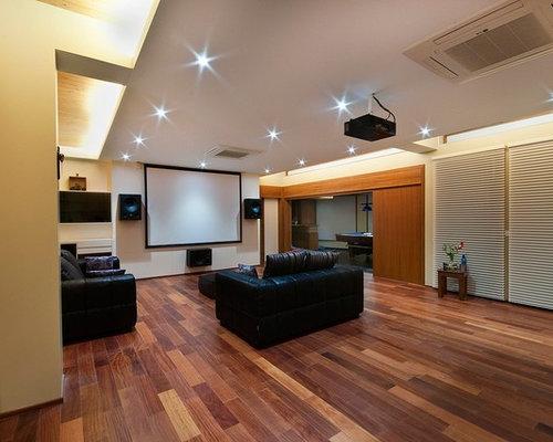 Home Theatre Design Ideas, Renovations U0026 Photos | Houzz