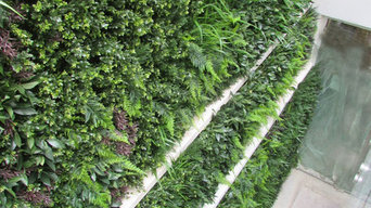 Exterior Artificial Green Wall in a Lightwell