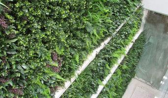 Exterior Artificial Green Wall in a Lightwell