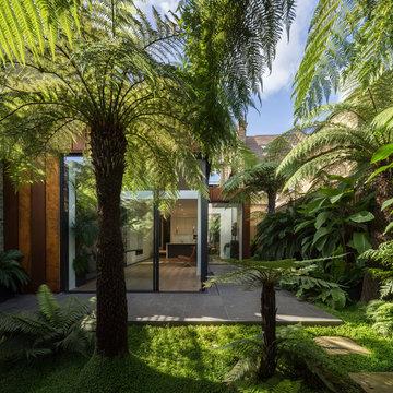 Fern House_Camberwell