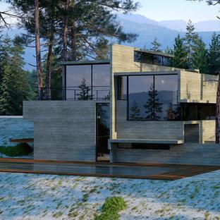 Cette image montre une très grande façade de maison grise minimaliste à deux étages et plus avec un toit plat.