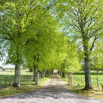 Muirside Farm, Brodie - Forres, Scotland