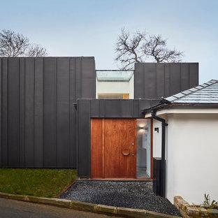 Esempio della facciata di una casa unifamiliare grigia contemporanea a un piano di medie dimensioni con rivestimento in metallo e tetto piano