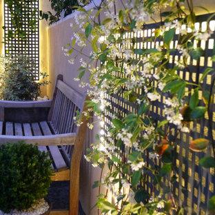 Неиссякаемый источник вдохновения для домашнего уюта: маленькая фитостена на внутреннем дворе в средиземноморском стиле