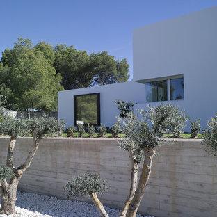 Imagen de jardín contemporáneo en patio delantero