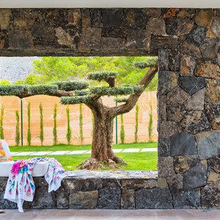 Ejemplo de camino de jardín francés, actual, grande, en patio