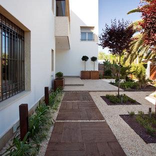 Foto de camino de jardín de secano, actual, en patio lateral, con exposición parcial al sol