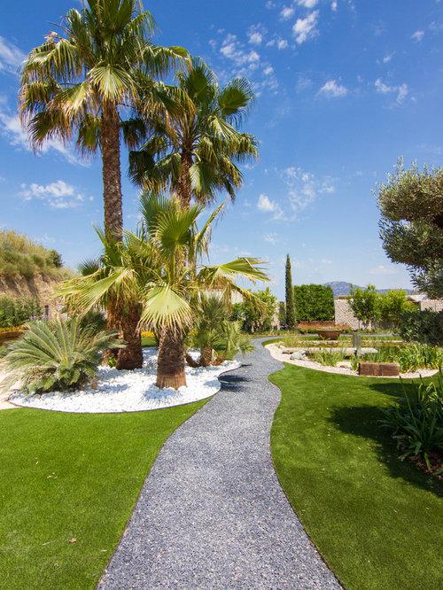 Fotos de jardines dise os de jardines ex ticos en patio for Jardines con palmeras