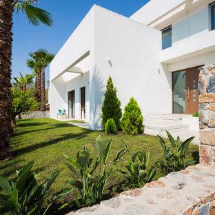 Ejemplo de acceso privado minimalista, de tamaño medio, en patio trasero