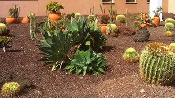 Jardín de cactus y crasas