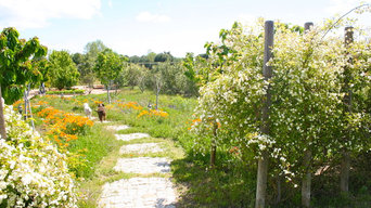 jardín de campo