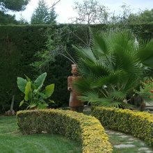 Jardín de la semana: Puro Mediterráneo