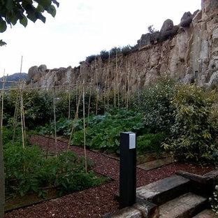 Свежая идея для дизайна: солнечный, осенний огород на участке среднего размера на заднем дворе в скандинавском стиле с подъездной дорогой, освещенностью и покрытием из каменной брусчатки - отличное фото интерьера